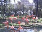 上野動物園その4