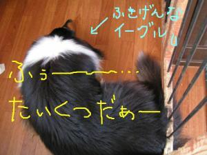 PICT01c.jpg