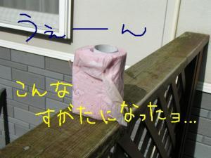 PICT20060524b.jpg