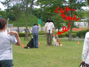 PICT20060611a.jpg