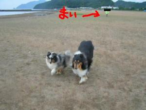 PICT20060612a.jpg