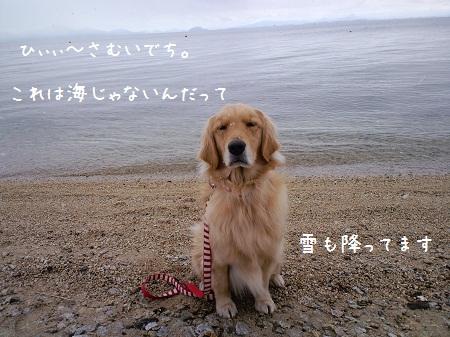 2011_0128_123511-CA3C0149.jpg