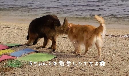 2011_0128_140107-CA3C0166.jpg