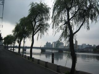 早朝の宍道湖(4)