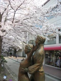 花の道の桜3