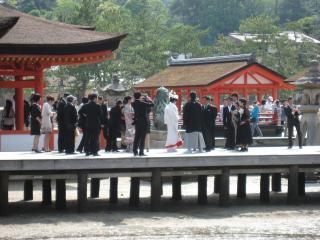 厳島神社(結婚式)