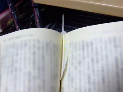 piro20080922-6.jpg