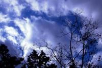 青い空&夕日