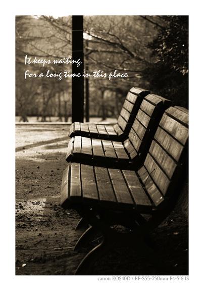 EOS40で撮影したベンチの写真