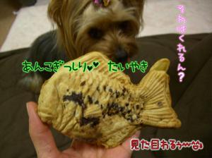 たい焼き>゜)))彡