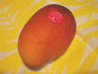mangomama