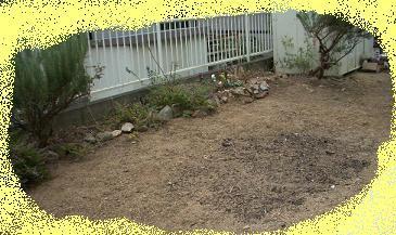 ガーデン 017