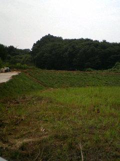 20080820185903草原