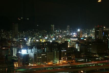 ポートタワーからの眺め