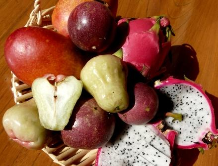 沖縄のフルーツ (3)re