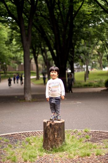 uenodaikichi1.jpg