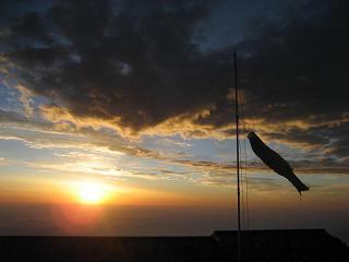 画像2008 summer 富士鯉