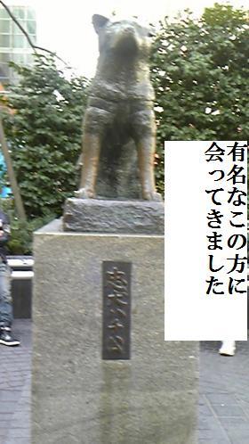 005_convert_20100131203156[1]