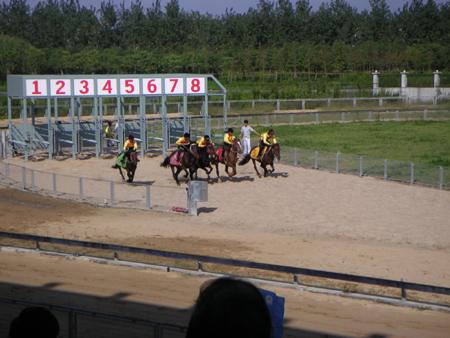 yeshengdongwuyuan0466.jpg