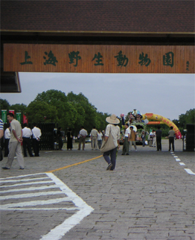 yeshengdongwuyuan0470.jpg