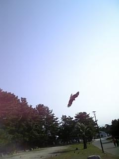 小戸公園5