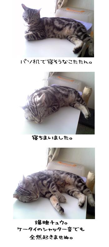2006_6_13.jpg