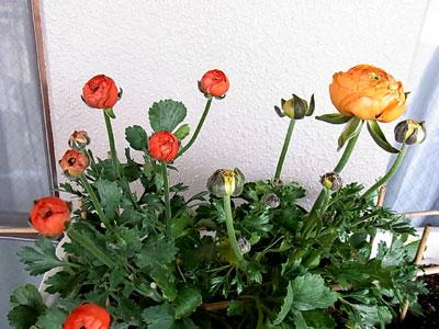 2010_04_14_01.jpg