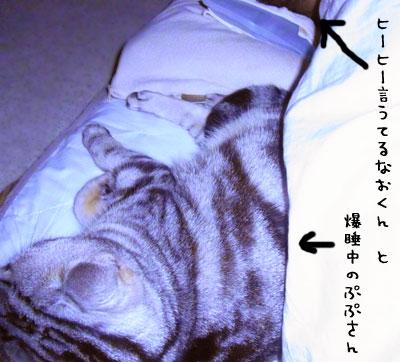 2010_05_13_063.jpg