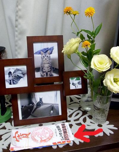 2010_08_04_lll.jpg