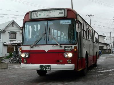 P1060889.jpg