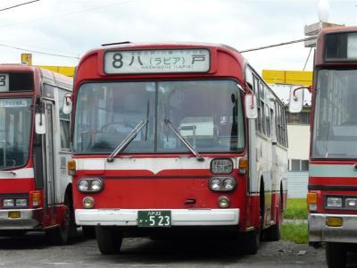 P1070309.jpg