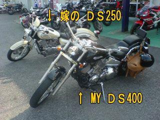 DS400&250