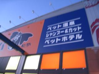 aa_20091020110652.jpg