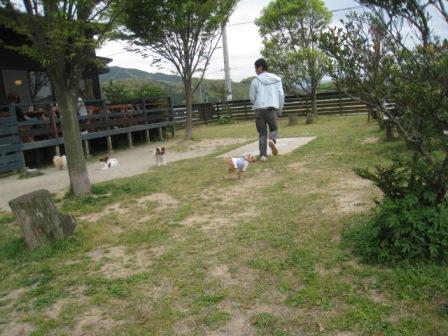 n4_20110506200748.jpg