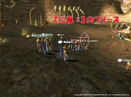 20051126-08.jpg