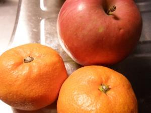 柿・みかん