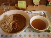ナトゥーラ 玄米野菜きのこカレー