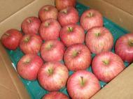 野川ファームのりんご