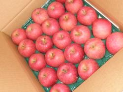 リンゴの贈り物