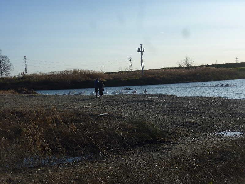 20101225_nb2.jpg