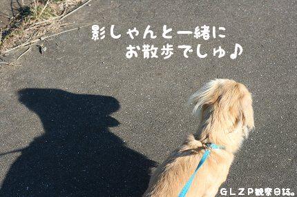 IMG_1212.jpg