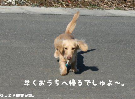 IMG_1244.jpg