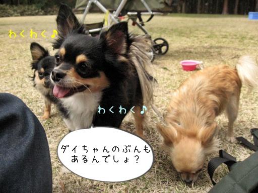 IMG_6314.jpg