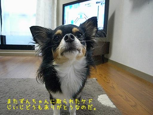 R0010530.jpg