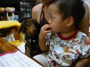 07-vacation_obon_01.jpg