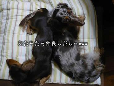 07-vacation_obon_03.jpg