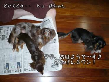 3wan-ojamushi01.jpg