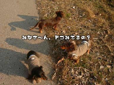 3wan-sanpo01.jpg