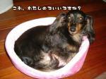 bed-pink03.jpg