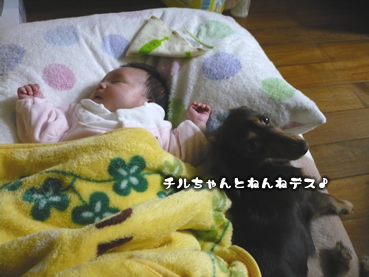 chiru_juri-02.jpg